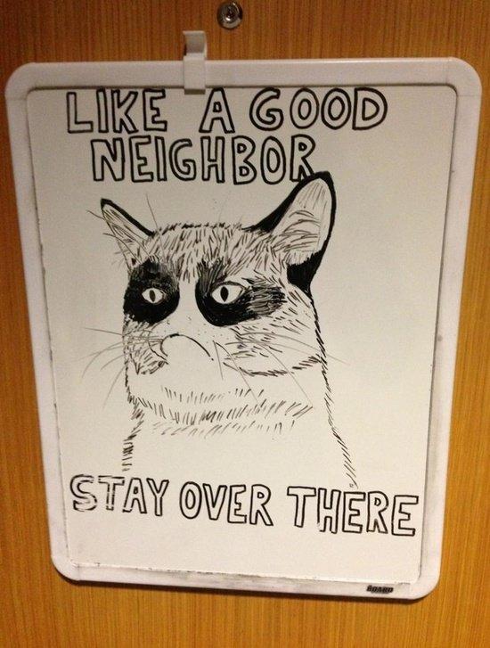 Like a Good Neighbor.... ...State Farm is here!.. Good fences make good neighbors grumpy cat