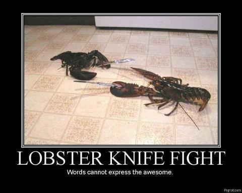 Lobsters. description. liten tiss