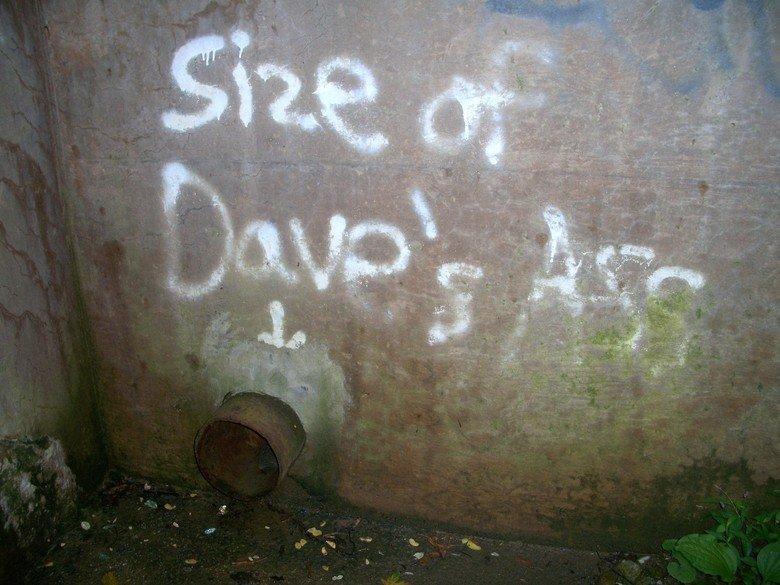 local graffiti. .. Guess he can bricks then... local graffiti Guess he can bricks then