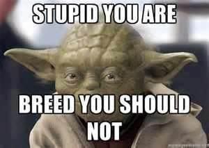 Lost a planet, Master Obi-Wan has.. . uni}: You similiar, tari,. MT Yoda