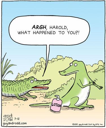 Lotion. lolwut. ARAH, HARDED, U/ FIAT HAPPENED TO YOU?!. You're a lizard, Harry lotion Crocodile alligator croc