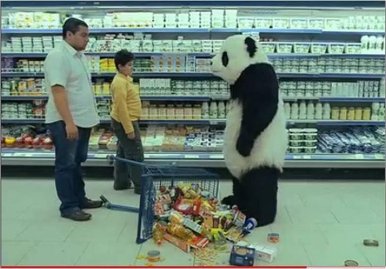Panda Cheese. Never say no to panda. iird, 1 H at ail. u want vid? Panda Cheese Never say no to panda iird 1 H at ail u want vid?