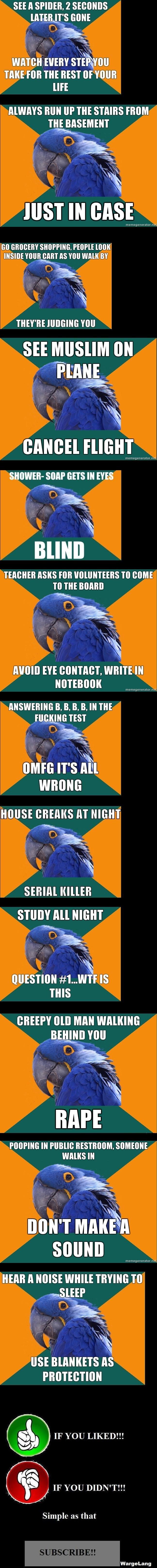 Paranoid Parrot Compilation!. View/Laugh = VOTE!<br /> 100 Thumbs = Number 2!<br /> Paranoid Parrot Compilation 2! - /funny_pictures/1351864/Paranoi Paranoid Parrot compilation lol funny