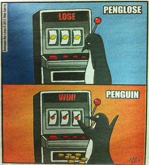 Penguin!. enjoy. lit. Wow! A penguin that plays Borderlands 2! Penguin! enjoy lit Wow! A penguin that plays Borderlands 2!