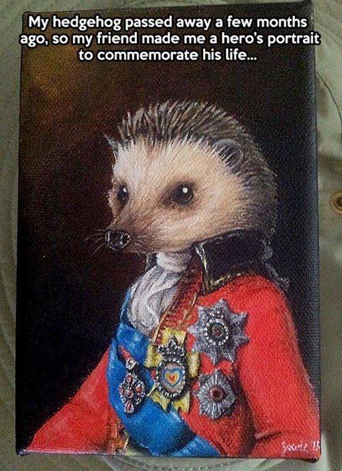 "pet hedgehog. hedgehog is 110% dead. ii; hedgehog paused away a few months i' _,)?.). rti. i. ago. so my friend made me a hero' s portrait "".s to commemorate hi hedgehog"