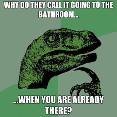 Philosoraptor Bathroom. am i right..?.. It just means,SHUT UP IN TAKING A PISS! philosoraptor poop bathroom Toilet lol