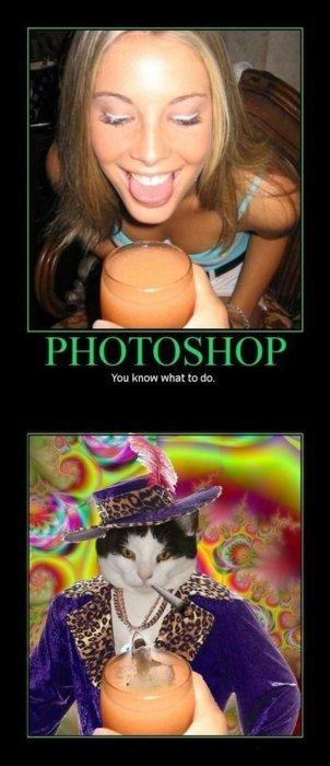 photoshop. . you knt) nra what tty (IO. photoshop you knt) nra what tty (IO