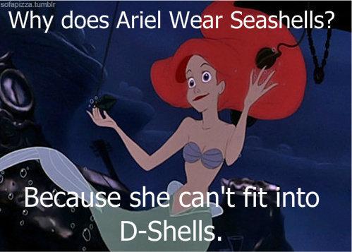 """Platypus. Y u no click tag. iii/ )"""" does Ariel Wear_ Seashells? .. Heu better content"""