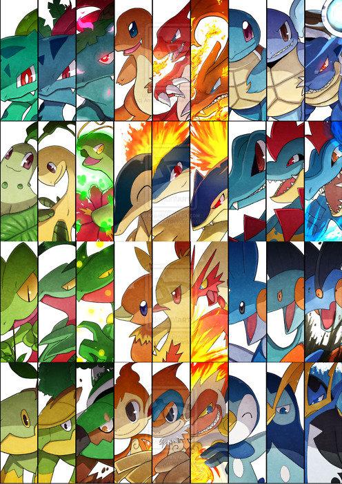 pokemon starters. .. always forgotten.. pokemon starters always forgotten