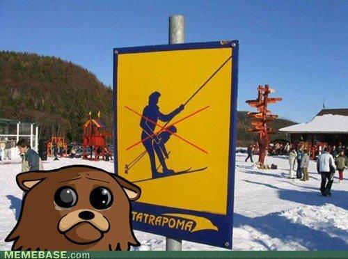 Poor Pedo Bear. . MEMEBASE,. Corn PEDO BEAR