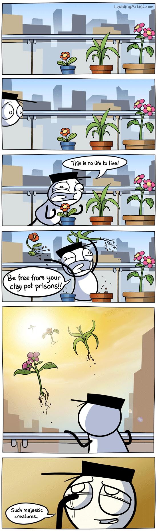 "Poor plants. . clay poi pr' us. ona!."". My life in a nutshell. Poor plants clay poi pr' us ona! "" My life in a nutshell"