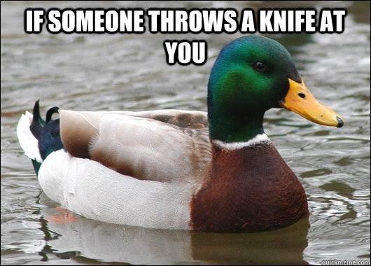 Pretty Straightforward. .. Duck! Pretty Straightforward Duck!