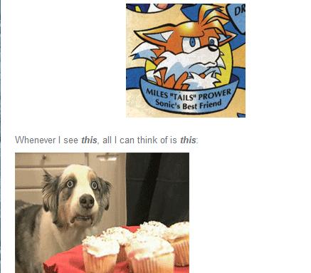 Tails. my website: incredibleoddities.com. Tails my website: incredibleoddities com