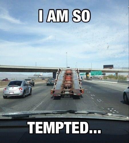temptation, sometimes a good idea. . temptation Good bad who cares