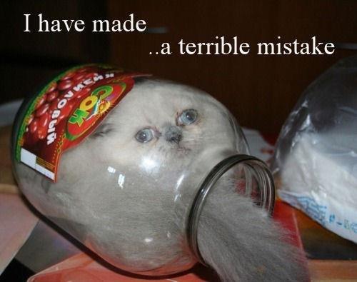 Terrible Mistake. . I have made q I 3 terrible mistake Terrible Mistake I have made q 3 terrible mistake