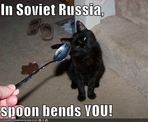 The Matrix. First ever content post . maul: [genus van! Cats Soviet Russia the matrix