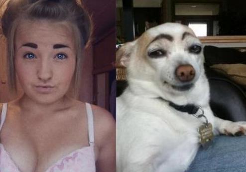 Them eyebrows. I see a similarity.. Them eyebrows I see a similarity
