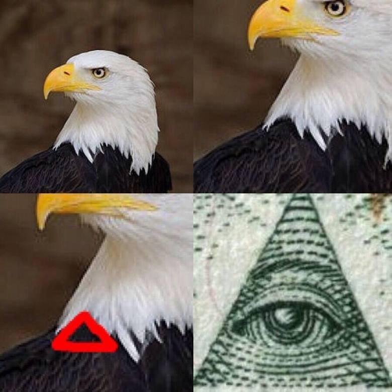There everywhere. . illuminati Bald eagle america Money eye lies