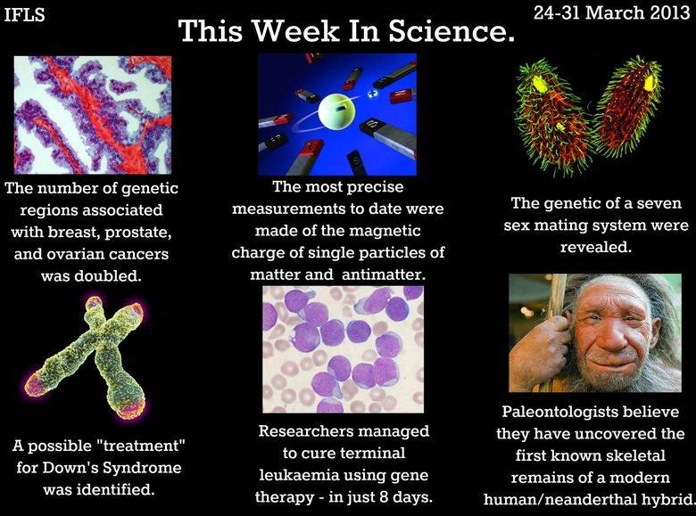 This week in science. ok.. Hey FJ rate my lawnmower This week in science ok Hey FJ rate my lawnmower