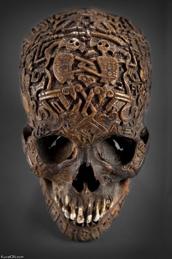 Tibetan skull. . kuvasz) N. cam. but how many wishes does it give you? Tibetan skull kuvasz) N cam but how many wishes does it give you?