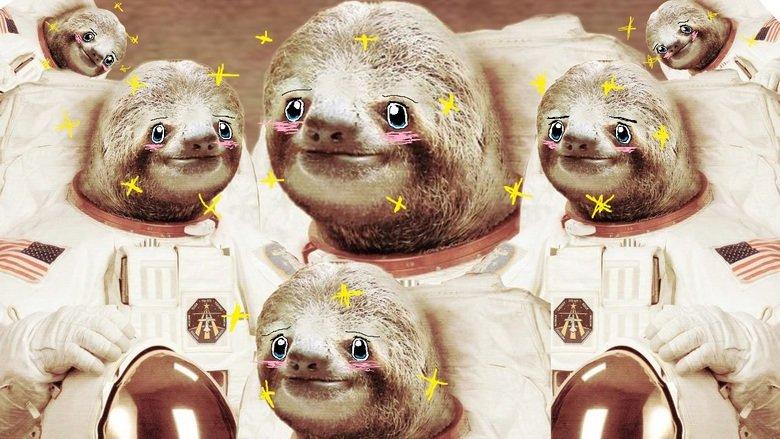 To space Senpai. . senpai sloth Space dinkelberg
