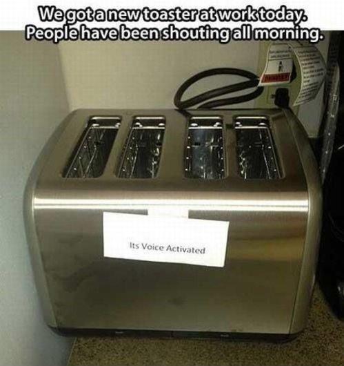 Toaster. . Pet: -__ e .' iii. rhill: iti' shouting all morning. Toaster Pet: -__ e ' iii rhill: iti' shouting all morning