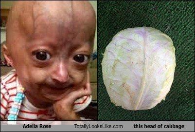 Totally looks like... . adalia rose Cabbage totally looks li