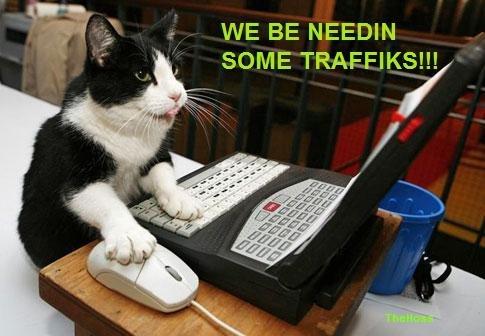 TRAFFIK CAT. THIS IS THE TRAFFIK CAT! HE WILL SAVE FUNNYJUNK!. WE BE NEEDIN. PLEASE HELP DE TRAFFIK CAT!!! Save FJ!!! traffic cat FUNNYJUNK Awesome comment on this shit epic Fail win