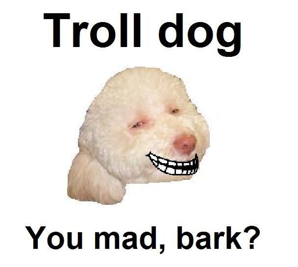 Troll dog. . You mad, bark?. Get the out, you god damn cancer. meme troll Dog doge
