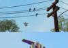 Toy Story Alt Ending