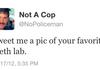 no cops here