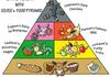 Pokemon Food Pyramid